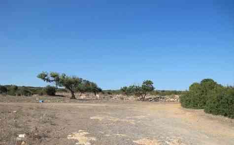 Land in Sadrazamkoy