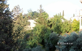 Land for sale in Bellapais