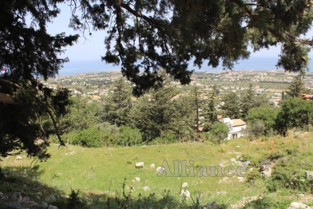 Land in Karsiyaka for sale, Turkish titles