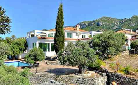 Villa in Ozankoy - where luxury and nature unite